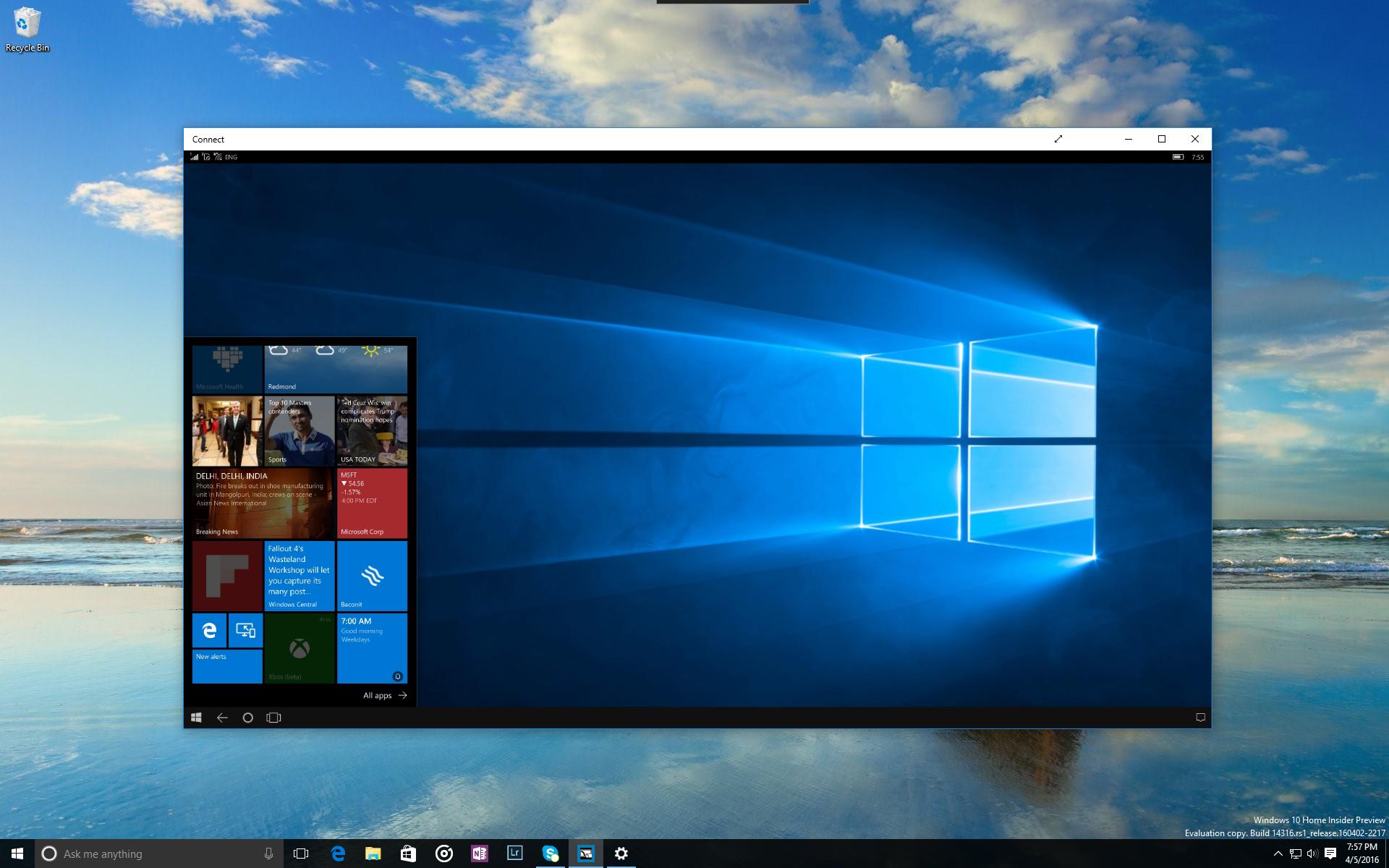 windows,  microsoft, anniversary, update, кот  № 1182268 загрузить